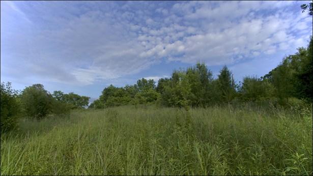 Residential Lot - Goodlettsville, TN (photo 5)