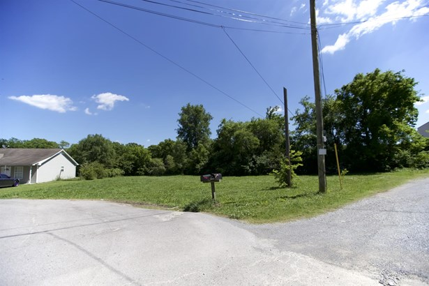 Residential Lot - Madison, TN (photo 3)