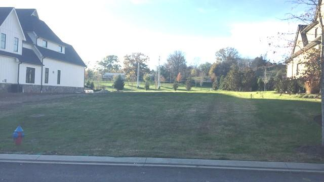 Residential Lot - College Grove, TN (photo 1)