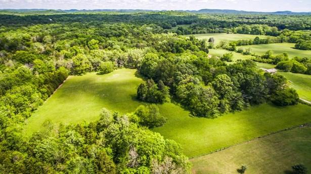 Farm - Chapel Hill, TN (photo 1)