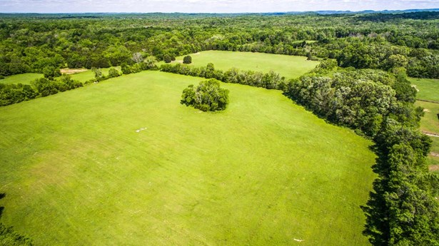 Farm - Chapel Hill, TN (photo 2)
