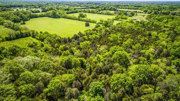 Farm - Chapel Hill, TN (photo 3)
