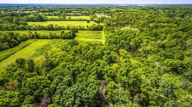 Farm - Chapel Hill, TN (photo 4)