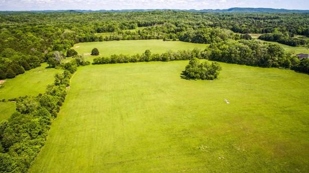 Farm - Chapel Hill, TN (photo 5)