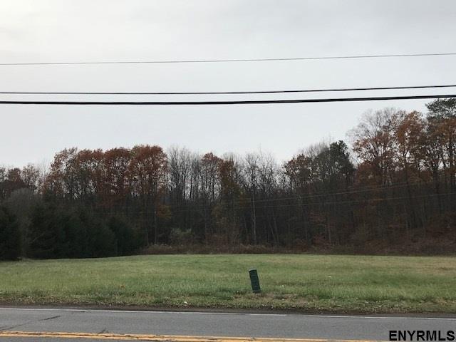 Vacant Land - Guilderland TOV, NY (photo 3)