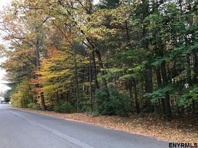 Vacant Land - Guilderland, NY (photo 3)