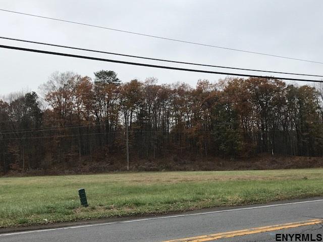 Vacant Land - Guilderland, NY (photo 2)