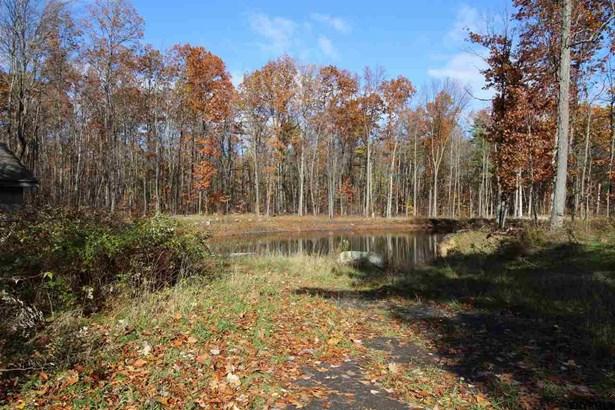 Vacant Land - Glenville TOV, NY (photo 4)