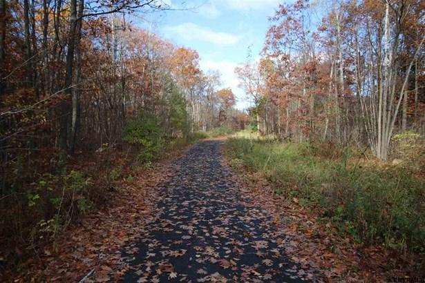 Vacant Land - Glenville, NY (photo 1)