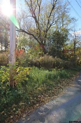 Vacant Land - Schenectady, NY (photo 2)