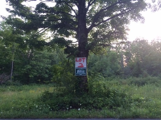 Vacant Land - Duanesburg, NY (photo 1)