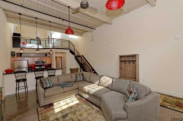 Residential Rental, Loft - Schenectady, NY (photo 3)