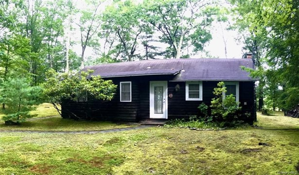 Single Family Residence, Cottage,Bungalow - Napanoch, NY