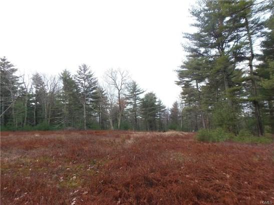Land - Forestburgh, NY (photo 3)