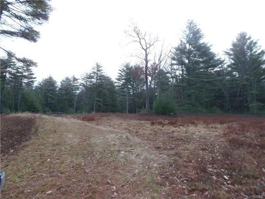 Land - Forestburgh, NY (photo 5)