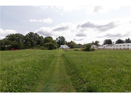 Farm House, Single Family - Walden, NY (photo 4)