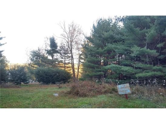 Land - Glen Spey, NY (photo 2)