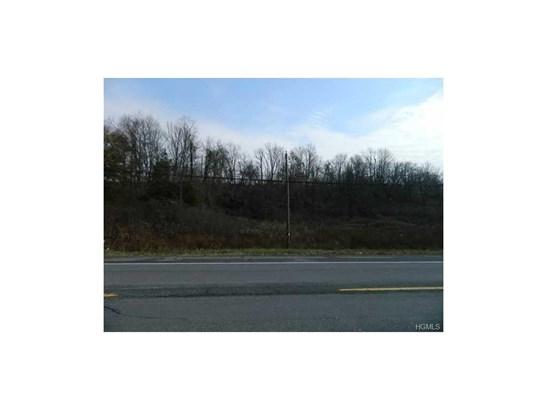 Land - Montgomery, NY (photo 5)