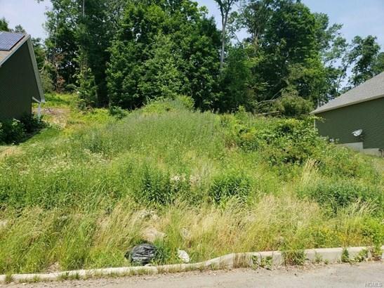 Land - Maybrook, NY (photo 2)