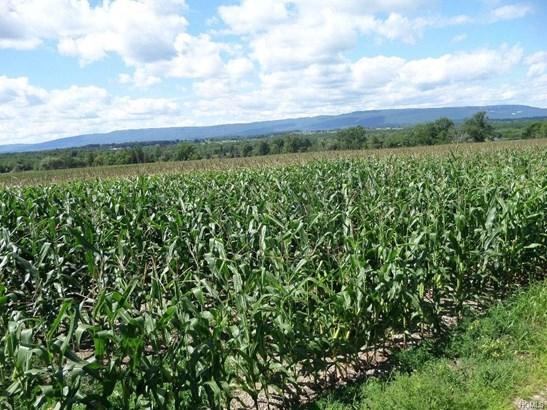 Land - Wallkill, NY (photo 1)