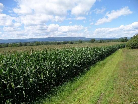 Land - Wallkill, NY (photo 2)