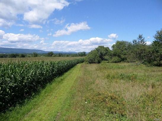Land - Wallkill, NY (photo 3)