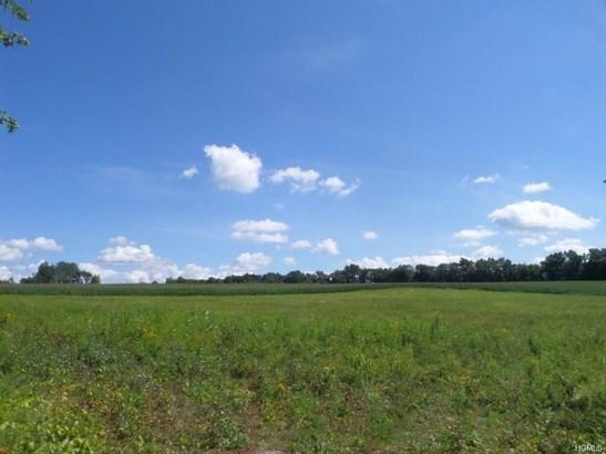 Land - Wallkill, NY (photo 4)