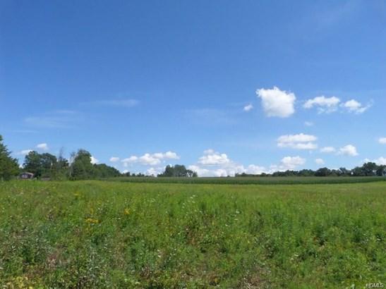Land - Wallkill, NY (photo 5)