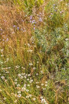 Vacant Land/Acreage - Bozeman, MT (photo 3)