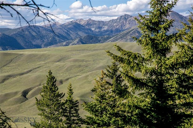 Vacant Land - Cameron, MT