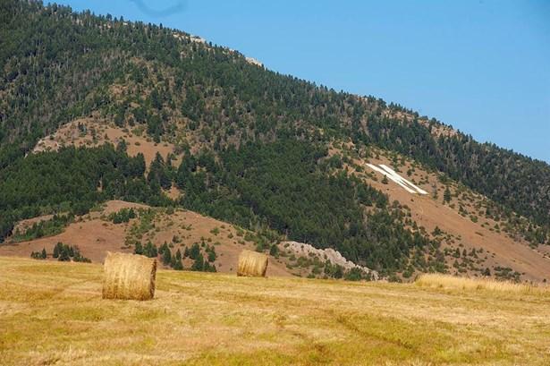 Vacant Land/Acreage - Bozeman, MT (photo 2)