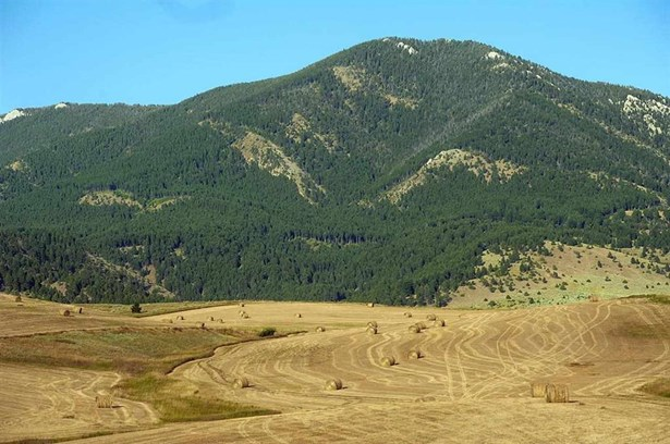 Vacant Land/Acreage - Bozeman, MT (photo 4)