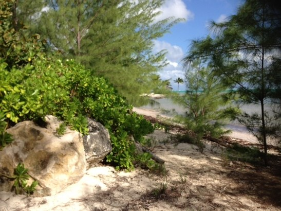 THE BEACH GROVES AT PEASE BAY (photo 3)