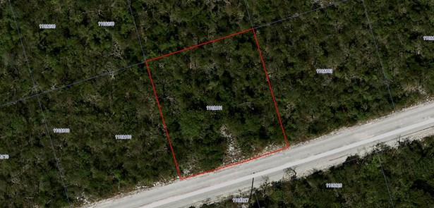 SELWORTHY GROVES LOT PRIME LOT, CAYMAN BRAC BLUFF (photo 3)