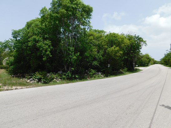 STAKE BAY BLUFF ROAD LOT, CAYMAN BRAC (photo 3)