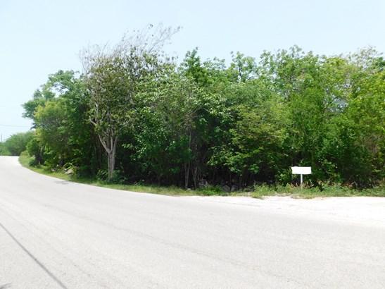 STAKE BAY BLUFF ROAD LOT, CAYMAN BRAC (photo 4)
