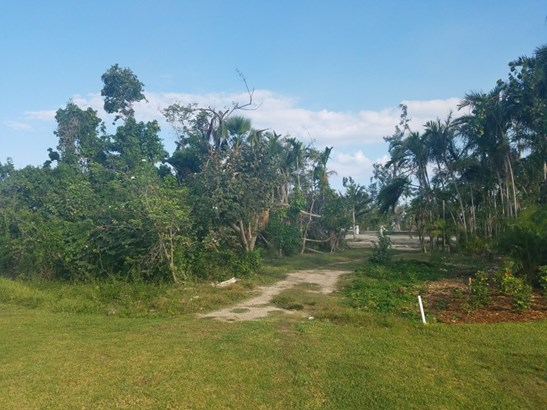 Lyford Cay Drive, Nassau - BHS (photo 1)
