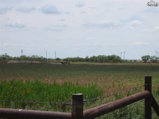 Acreage 100-500 Acres - Westover, TX (photo 4)