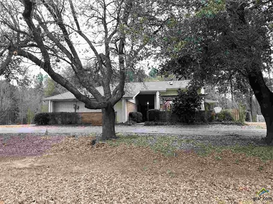 Single Family Detached, Contemporary/Modern - Daingerfield, TX (photo 1)