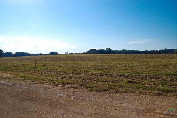 Rural Acreage - Pittsburg, TX