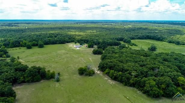 Rural Acreage - Mt Pleasant, TX (photo 4)