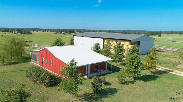 Single Family Detached, Ranch - Mt Pleasant, TX