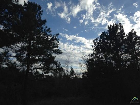 Rural Acreage - Avinger, TX (photo 1)