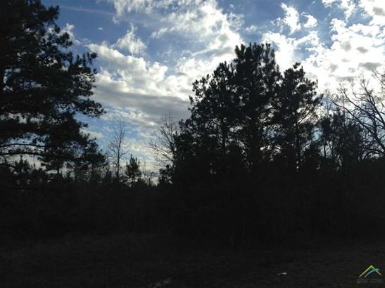 Rural Acreage - Avinger, TX (photo 3)