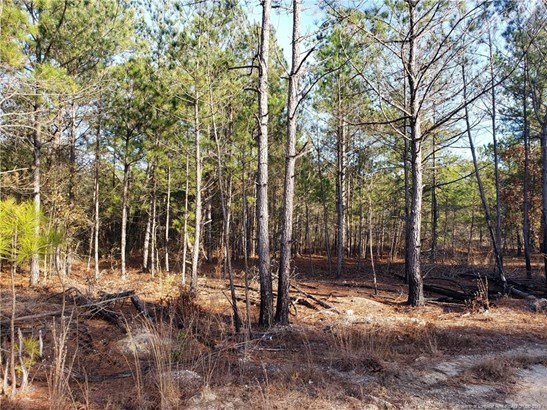 Residential Lot - Autryville, NC