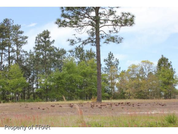 Residential Lot - AUTRYVILLE, NC (photo 2)