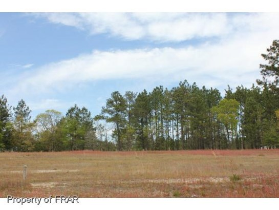 Residential Lot - AUTRYVILLE, NC (photo 5)