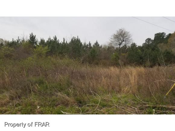 Farm and Land - FAYETTEVILLE, NC (photo 2)