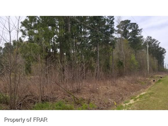 Farm and Land - FAYETTEVILLE, NC (photo 5)