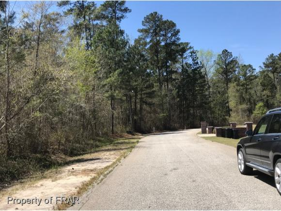 Residential Lot - RED SPRINGS, NC (photo 3)
